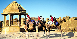 Camel Safari, Rajasthan Travel Guide