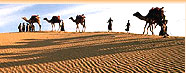 Travel In Rajasthan